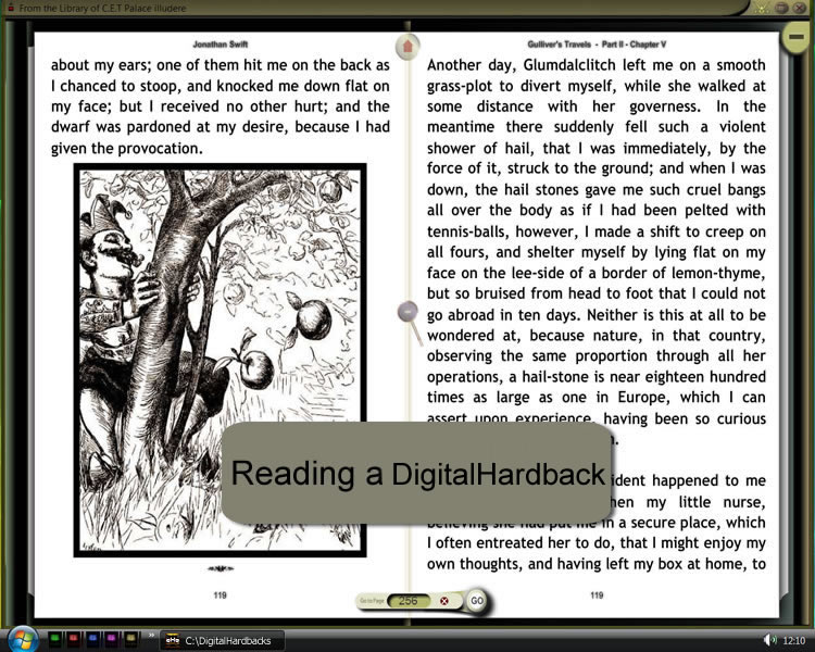 Reading a Digital Hardback